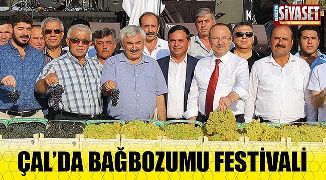 Çal'da bağbozumu festivali