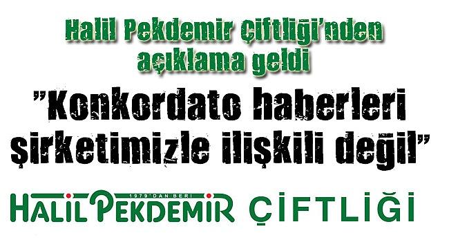 Halil Pekdemir: İşimizin başındayız