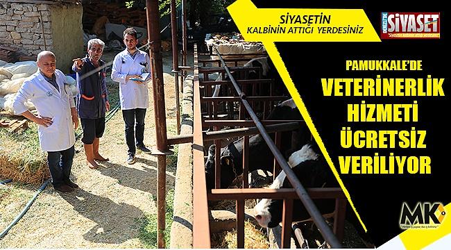 Pamukkale'de veterinerlik hizmeti ücretsiz veriliyor