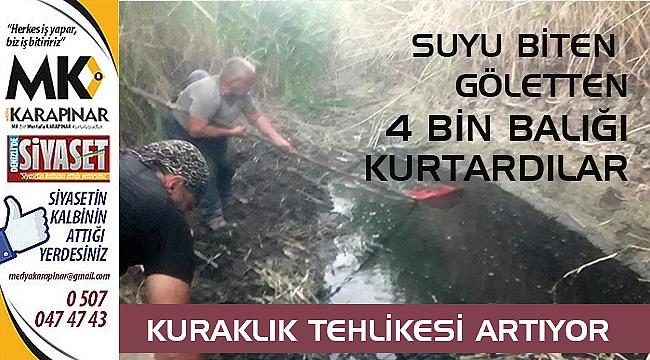 Denizli'de suyu biten göletten 4 bin balığı kurtardılar